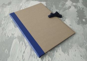 Папка с гребешками, на завязках, ф-т альбомный А4, корешок 2см ПГМк2ПЗ
